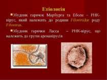 Етіологія Збудник гарячок Марбурга та Ебола – РНК-вірус, який належить до род...