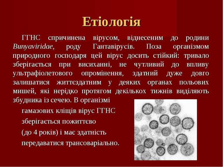 Етіологія ГГНС спричинена вірусом, віднесеним до родини Bunyaviridae, роду Га...