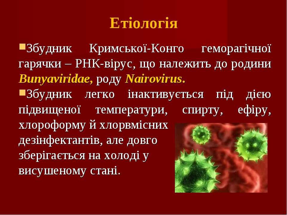 Етіологія Збудник Кримської-Конго геморагічної гарячки – РНК-вірус, що належи...
