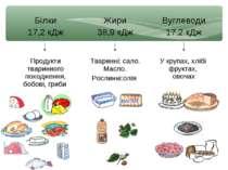 Білки 17,2 кДж Жири 38,9 кДж Вуглеводи 17.2 кДж Продукти тваринного походженн...