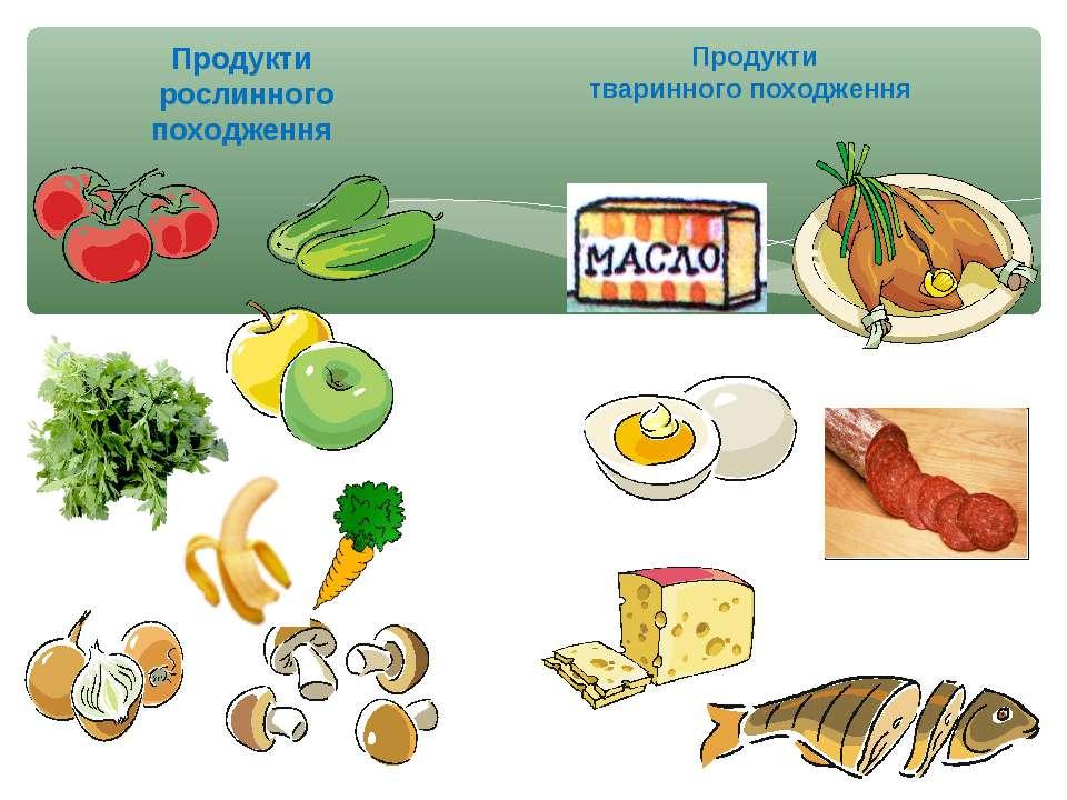 Продукти рослинного походження Продукти тваринного походження