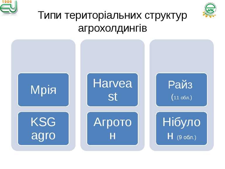Типи територіальних структур агрохолдингів