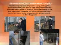 Наша маленька допога мешканцям притулку Наша команда провела збір коштів сере...
