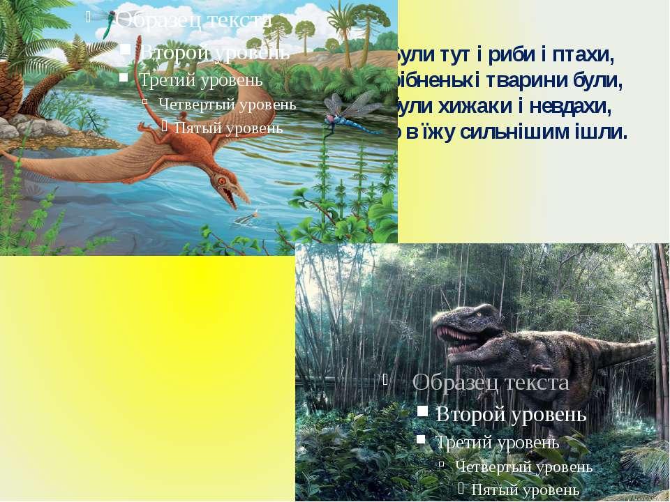 Були тут і риби і птахи, дрібненькі тварини були, були хижаки і невдахи, що в...