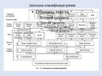Загальна класифікація ринків