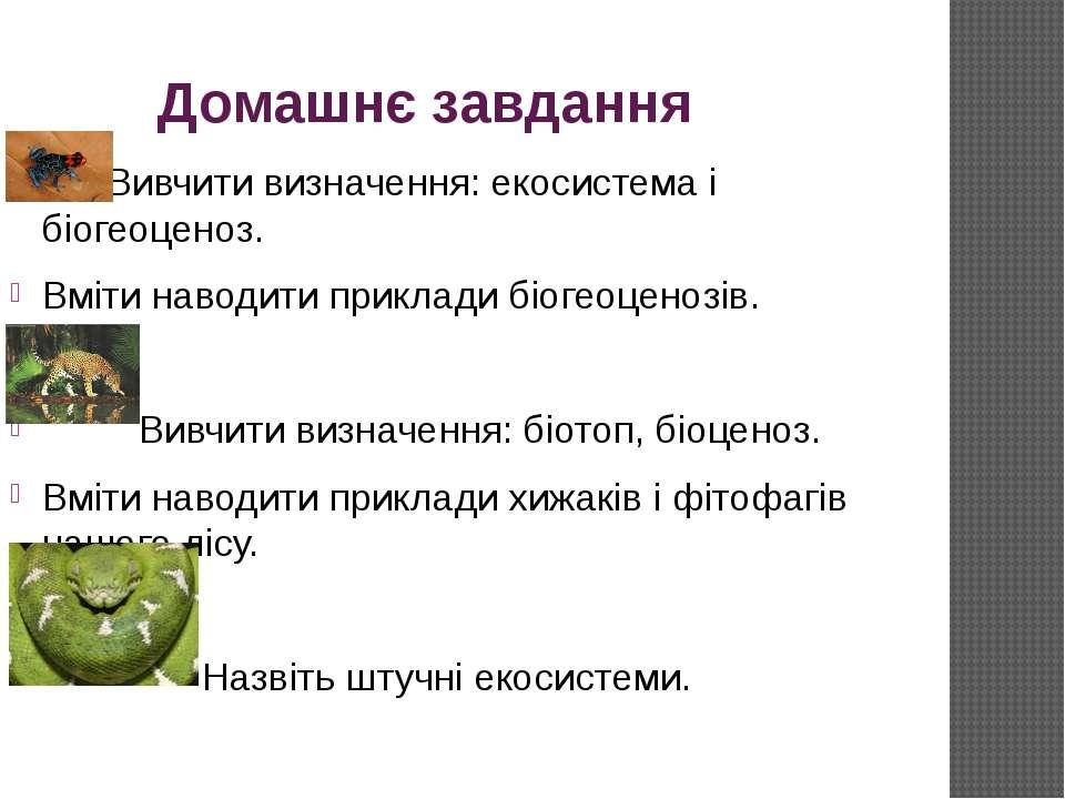 Домашнє завдання Вивчити визначення: екосистема і біогеоценоз. Вміти наводити...