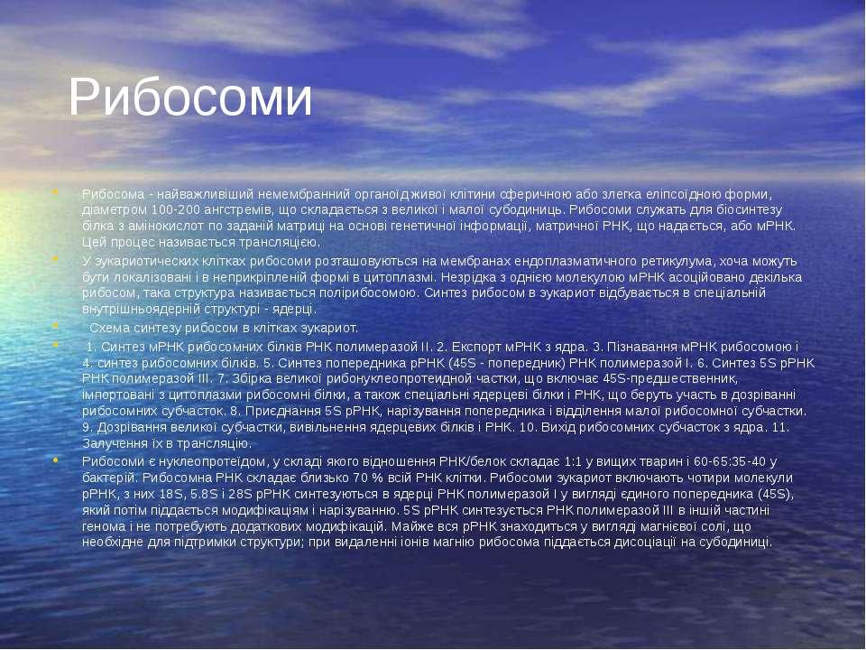 Рибосоми Рибосома - найважливіший немембранний органоїд живої клітини сферичн...