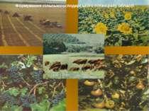 Формування сільськогосподарського потенціалу області