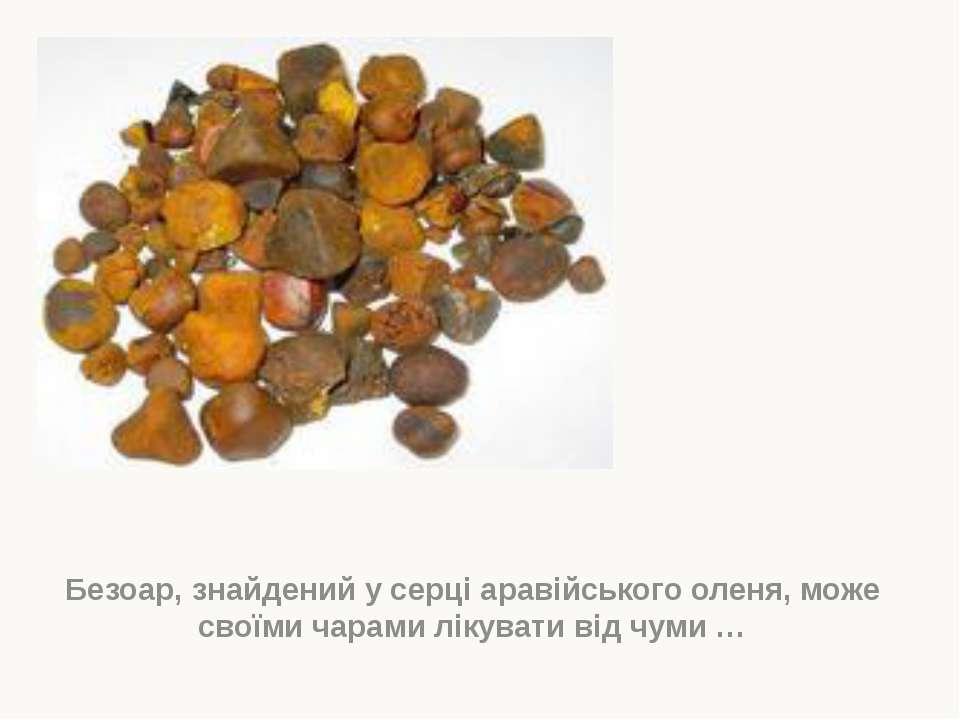 Безоар, знайдений у серці аравійського оленя, може своїми чарами лікувати від...