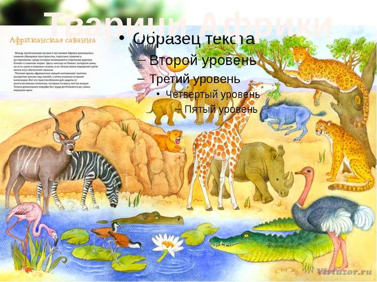 Тварини Африки