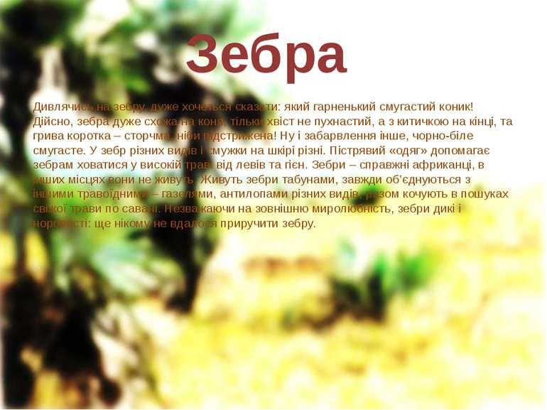 Зебра Дивлячись на зебру, дуже хочеться сказати: який гарненький смугастий ко...