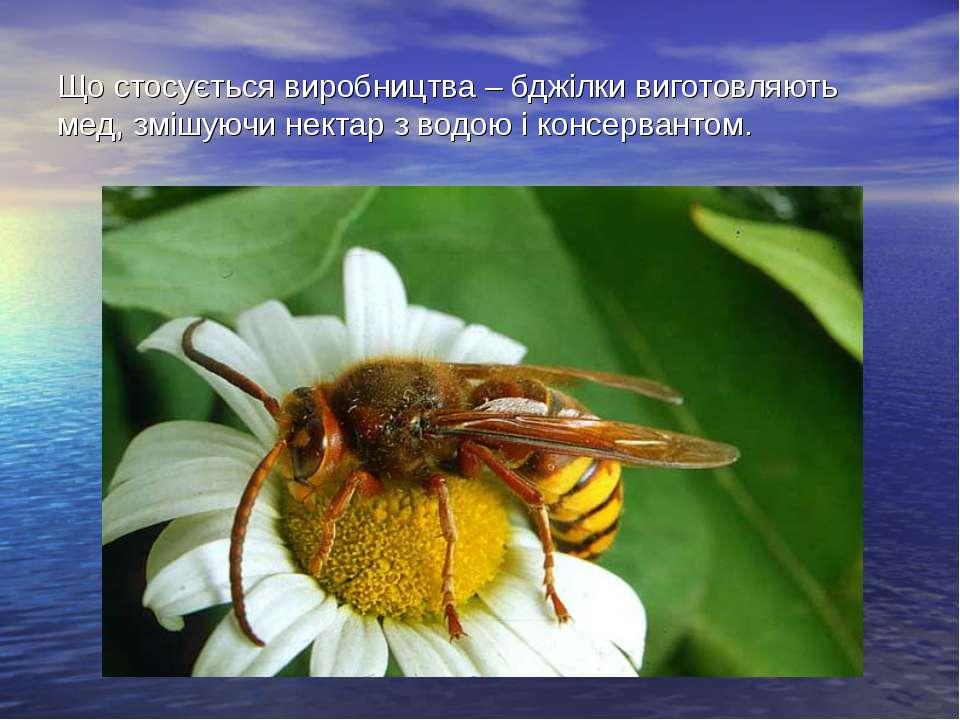 Що стосується виробництва – бджілки виготовляють мед, змішуючи нектар з водою...