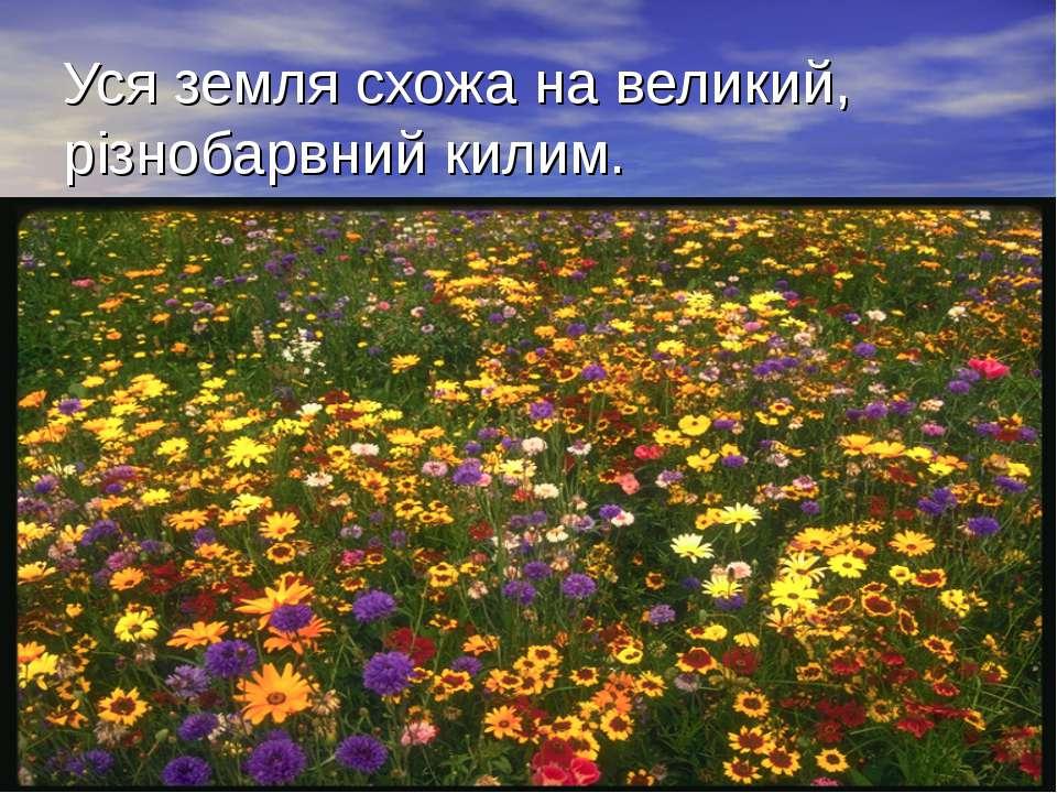 Уся земля схожа на великий, різнобарвний килим.
