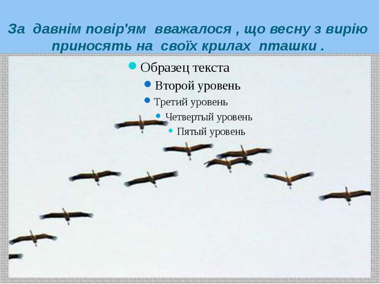 За давнім повір'ям вважалося , що весну з вирію приносять на своїх крилах пта...