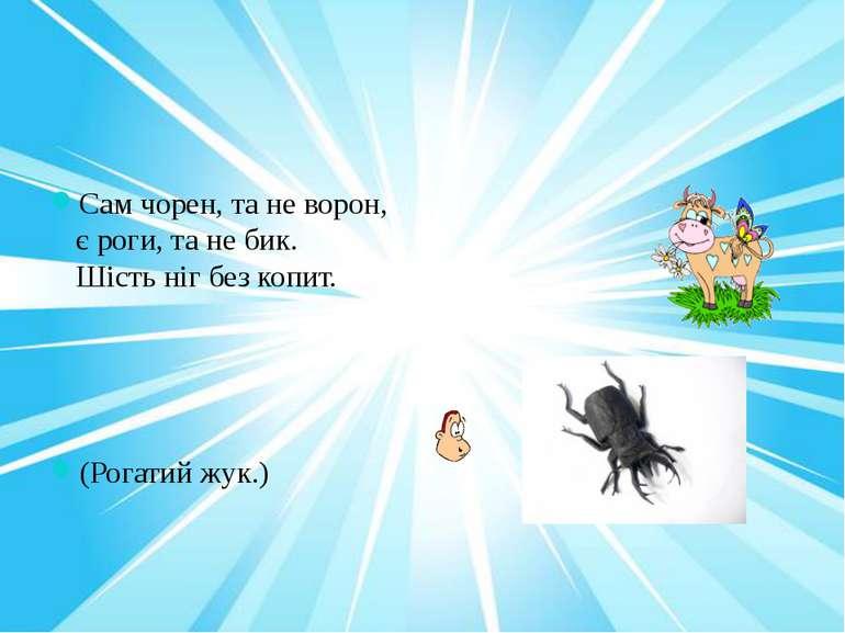 Сам чорен, та не ворон, є роги, та не бик. Шість ніг без копит. (Рогатий жук.)