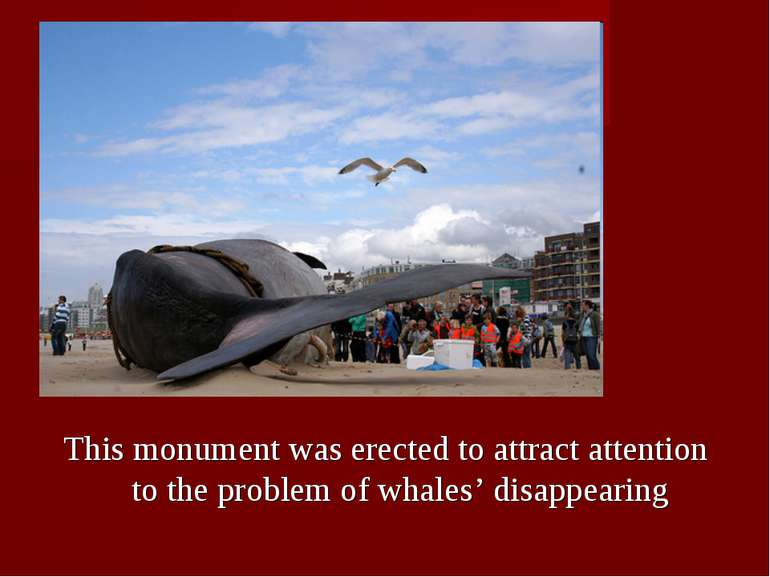 This monument was erected to attract attention to the problem of whales' disa...