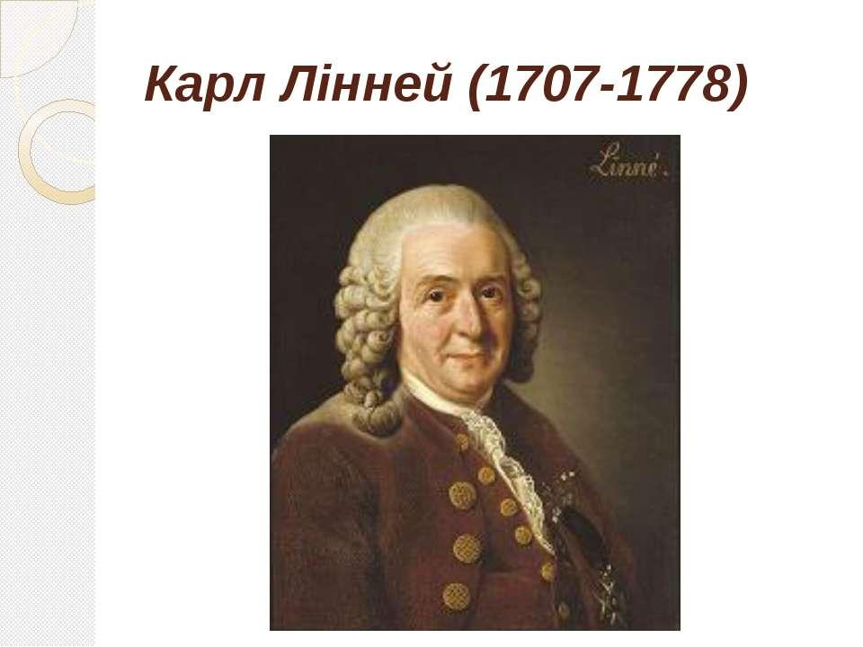 Карл Лінней (1707-1778)