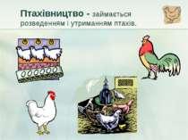 Птахівництво - займається розведенням і утриманням птахів.