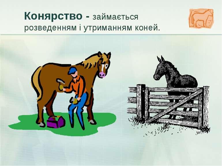 Конярство - займається розведенням і утриманням коней.