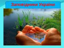 Заповідники України