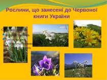 Рослини, що занесені до Червоної книги України