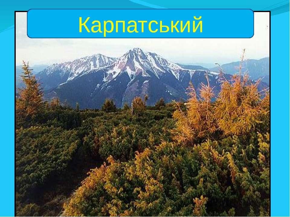 Карпатський