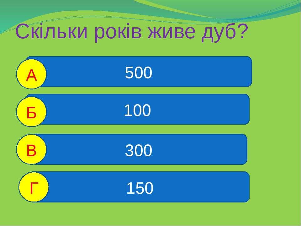 Скільки років живе дуб? 500 100 300 150 А Б В Г