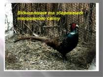 Відновлення та збереження тваринного світу