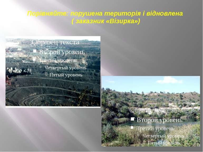Порівняйте: порушена територія і відновлена ( заказник «Візирка»)