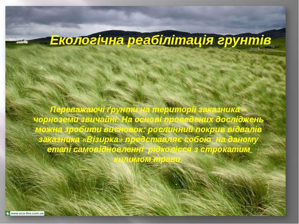 Екологічна реабілітація грунтів Переважаючі ґрунти на території заказника – ч...