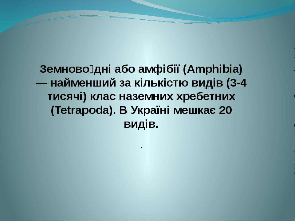 Земново дні або амфібії (Amphibia) — найменший за кількістю видів (3-4 тисячі...