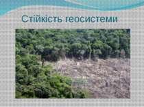 Стійкість геосистеми Стійкість геосистеми полягає у її здатності у разі дії з...