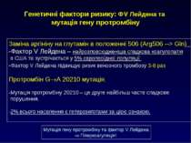 Заміна аргініну на глутамін в положенні 506 (Arg506 --> Gln) -Фактор V Лейден...