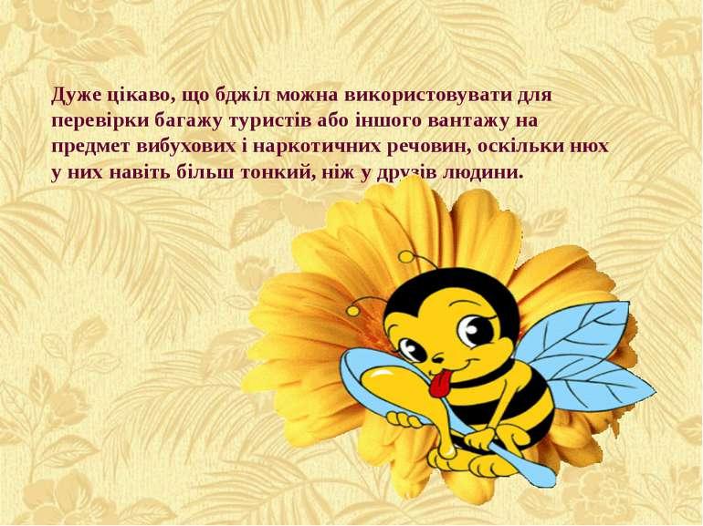 Дуже цікаво, що бджіл можна використовувати для перевірки багажу туристів або...