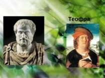 Арістотель Теофраст
