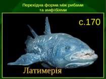 Перехідна форма між рибами та амфібіями с.170