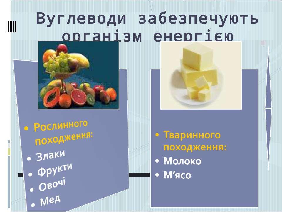 Вуглеводи забезпечують організм енергією