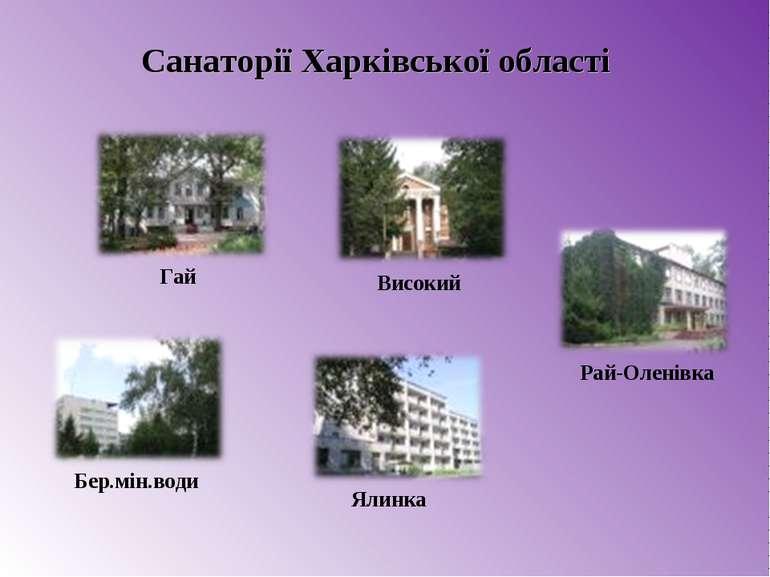 Ялинка Гай Рай-Оленівка Бер.мін.води Високий Санаторії Харківської області