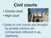 Civil courts County court High court Cases in civil courts are brought by pri...