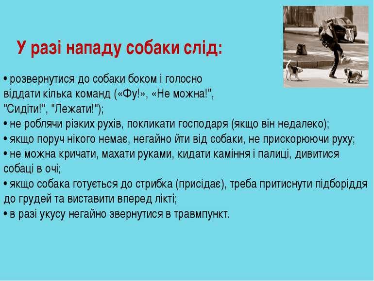 У разі нападу собаки слід: • розвернутися до собаки боком і голосно віддати к...