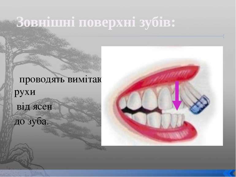 проводять вимітаючі рухи від ясен до зуба. Зовнішні поверхні зубів: