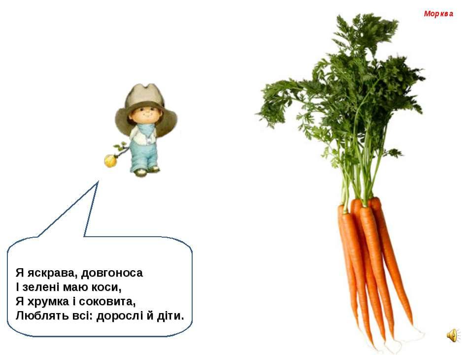 Морква Я яскрава, довгоноса І зелені маю коси, Я хрумка і соковита, Люблять в...