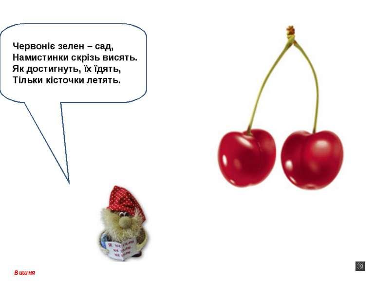 Вишня Червоніє зелен – сад, Намистинки скрізь висять. Як достигнуть, їх їдять...