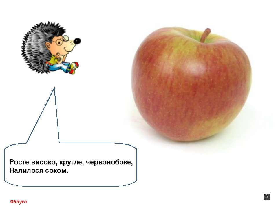 Яблуко Росте високо, кругле, червонобоке, Налилося соком.