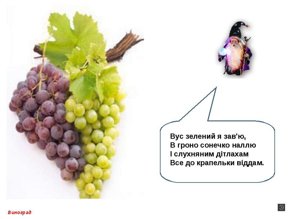 Виноград Вус зелений я зав'ю, В гроно сонечко наллю І слухняним дітлахам Все ...