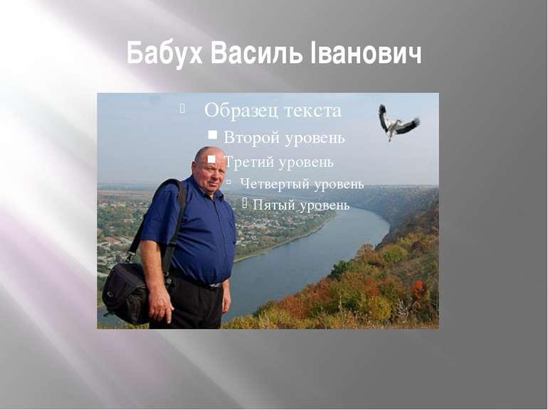 Бабух Василь Іванович