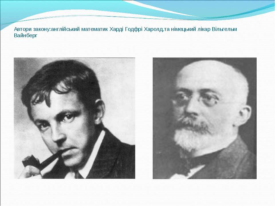 Автори закону:англійський математик Харді Годфрі Харолд,та німецький лікар Ві...