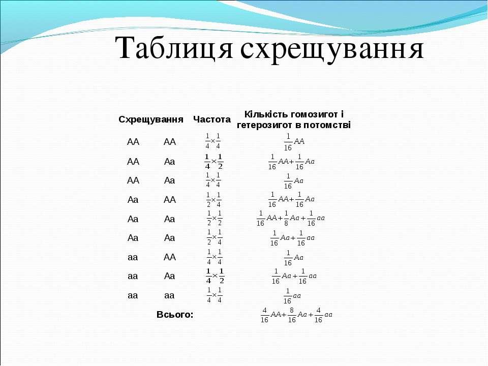 Таблиця схрещування Схрещування Частота Кількість гомозигот і гетерозигот в п...