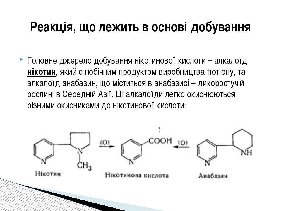 Головне джерело добування нікотинової кислоти – алкалоїд нікотин, який є побі...