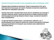Лікування сечокам'яної хвороби та інших захворювань нирок і сечовивідних шлях...